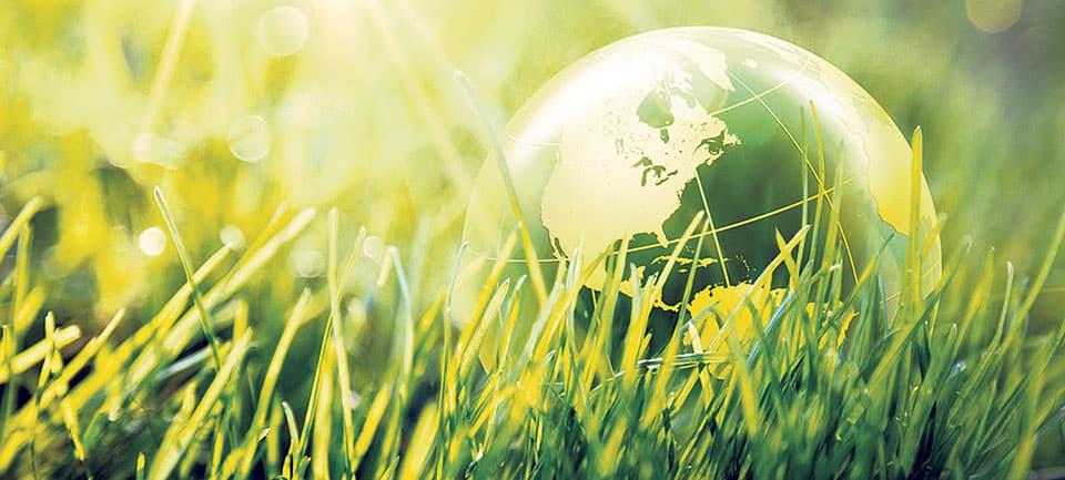 Environmental Health News: Latest Research And News