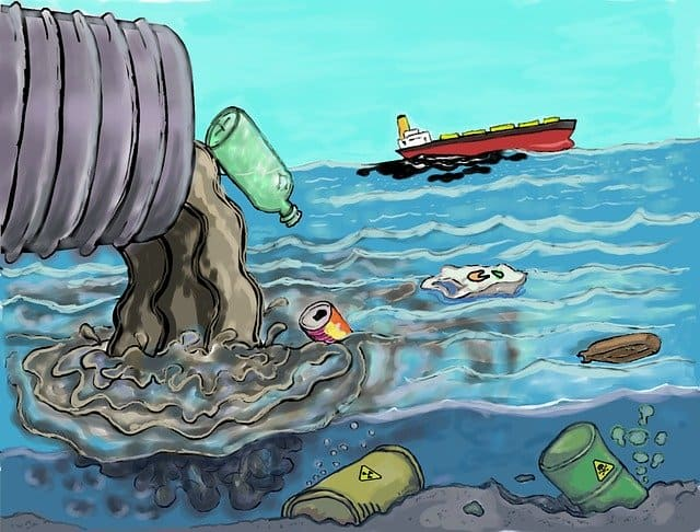 Major Types Of Water Pollution And Their Effect On Our Future